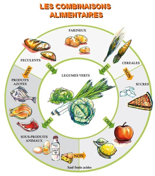 combinaisons alimentaires cercle