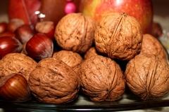 walnuts-558488_640